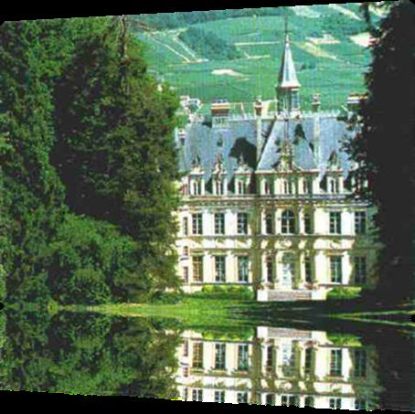 Vign_chateau_de_boursault