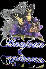 Vign_papillon