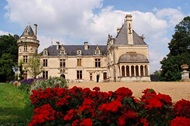 vign1_chateau-de-la-court-d_1_